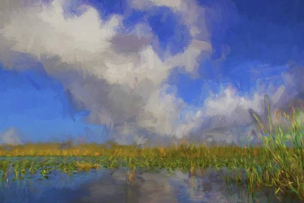 Photograph - Everglades Impressions by Alice Gipson