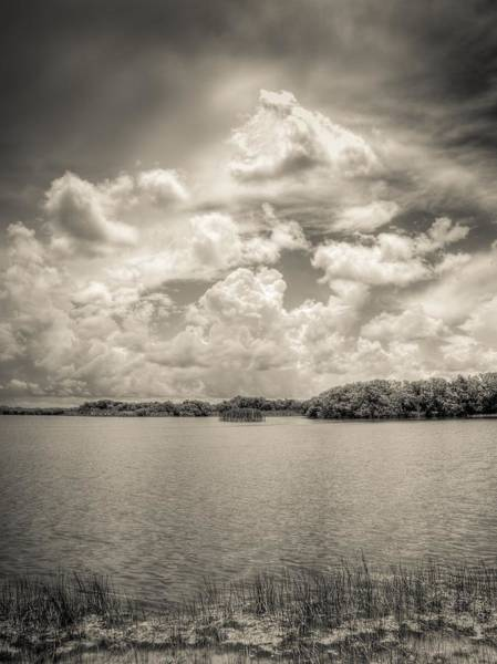 Photograph - Everglades Lake 6919 Bw by Rudy Umans