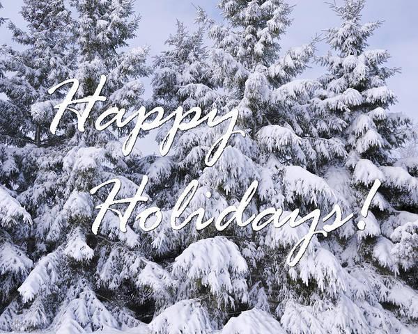 Photograph - Evergreen Holiday Card by Joan Carroll
