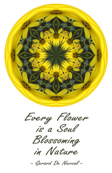 Photograph - Every Flower Is A Soul Mandala by Beth Sawickie
