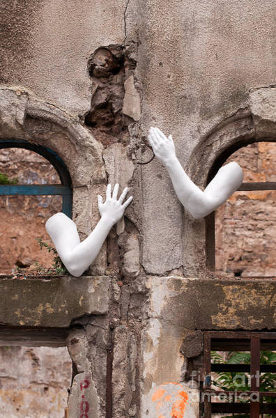 Photograph - Every Hand Goes Searching For Its Partner 01 by Rick Piper Photography