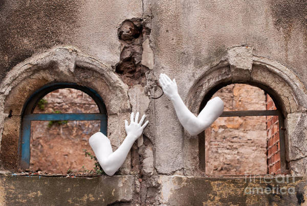 Photograph - Every Hand Goes Searching For Its Partner 02 by Rick Piper Photography