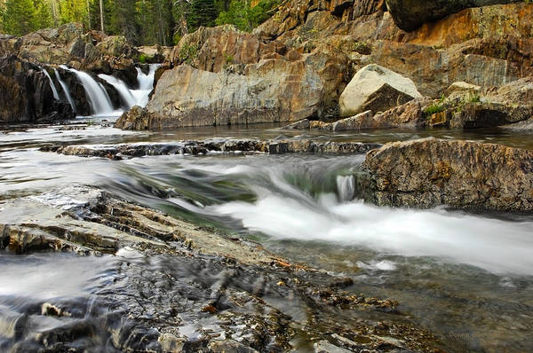 Yuba River Photograph - Everything Flows by Donna Blackhall