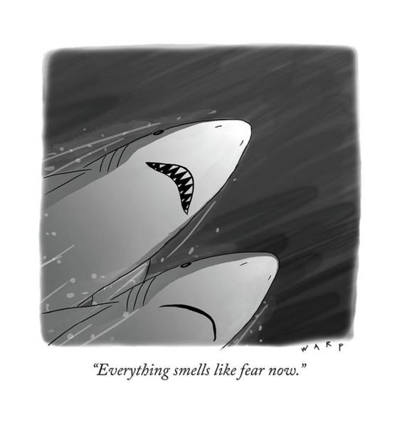 Shark Drawing - Everything Smells Like Fear Now by Kim Warp