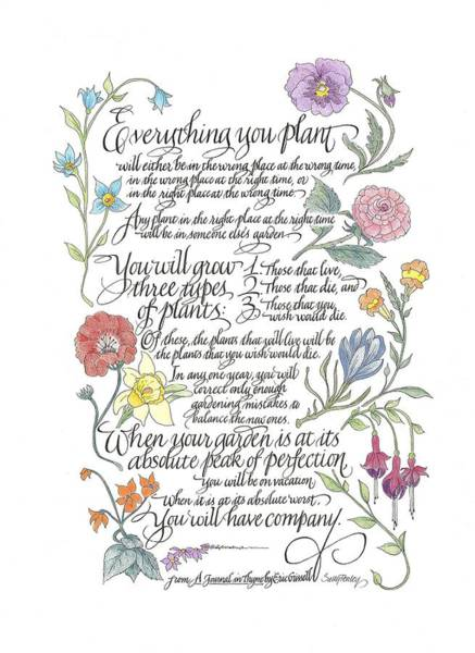 Painting - Everything You Plant by Sally Penley