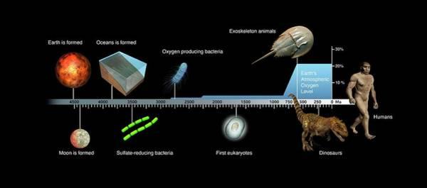 Astrophysical Wall Art - Photograph - Evolution Of Earth Timeline by Mikkel Juul Jensen