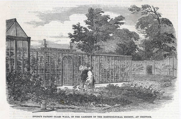 Garden Wall Drawing - Ewing's Glass Wall, Designed by  Illustrated London News Ltd/Mar