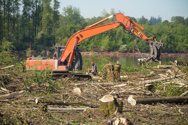 Metro Vancouver Wall Art - Photograph - Excavator Clearing Forest For New by Christopher Kimmel