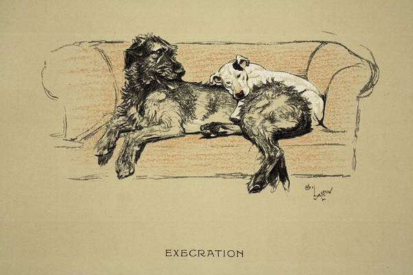 Hound Drawing - Execration, 1930, 1st Edition by Cecil Charles Windsor Aldin
