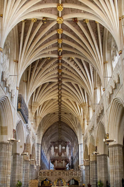 Exeter Cathedral And Organ Art Print