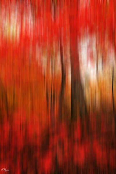 Photograph - Existing Red by Lourry Legarde