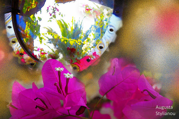 Photograph - Exotic Flowers In Mirror by Augusta Stylianou