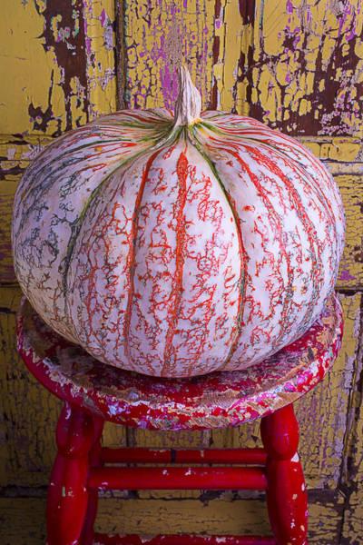 Edible Photograph - Exotic Pumpkin by Garry Gay