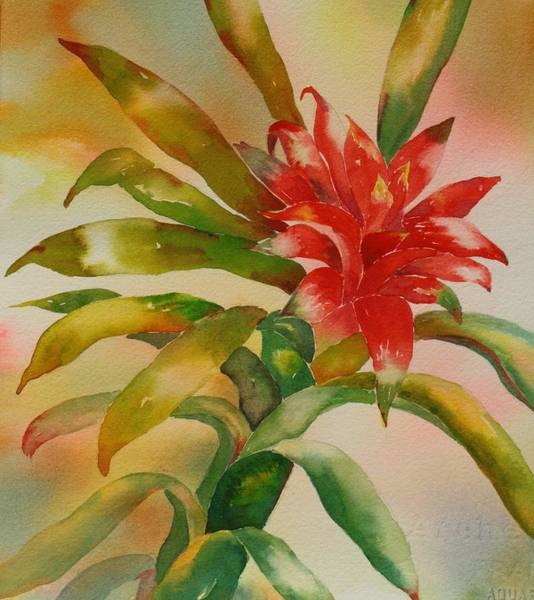 Painting - Exotica by Tara Moorman