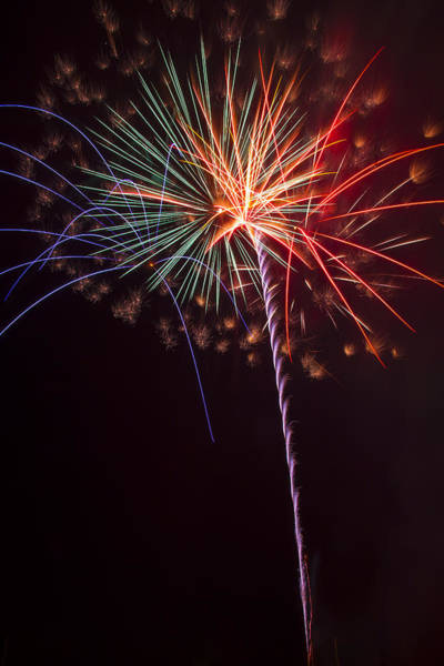 Fireworks Display Wall Art - Photograph - Exploding Colors by Garry Gay