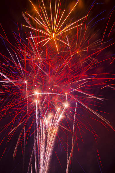 Fireworks Display Wall Art - Photograph - Exploding Fireworks by Garry Gay