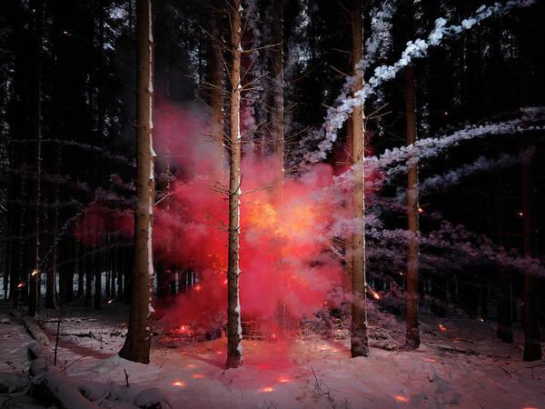Photograph - Explosion In Snowy Forest by Henrik Sorensen