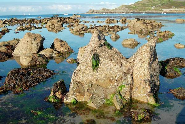 Seaweed Photograph - Exposed Rocks And Tidal Pools by Tony Craddock/science Photo Library