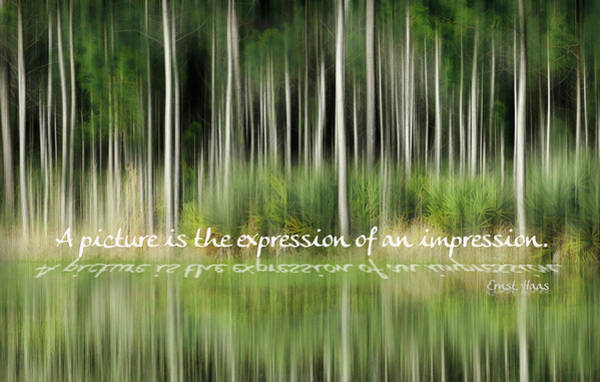 Photograph - Expression Of An Impression by Grace Dillon