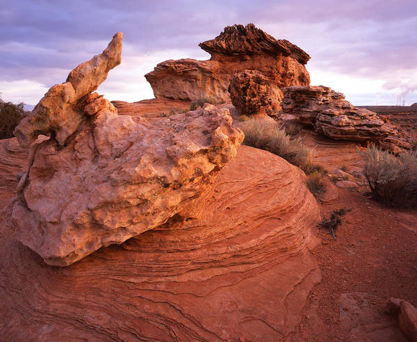 Photograph - Extraterrestarial Rocks by Ray Mathis