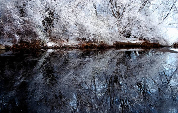 Extreme Reflections Art Print