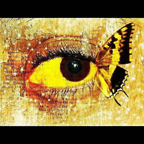 Edit Photograph - #eye #butterfly #brown #black #edit by Tatyanna Spears