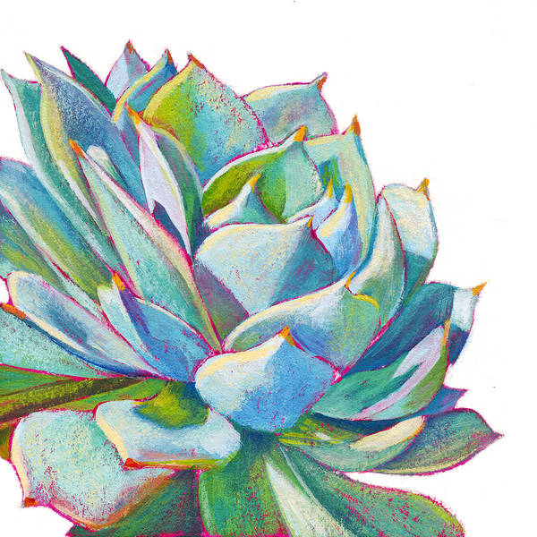 Succulent Wall Art - Painting - Eye Candy by Athena Mantle