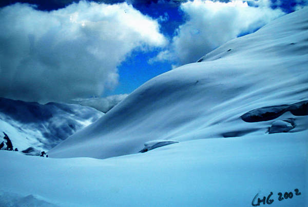 Photograph - Eye Catcher In Snow by Colette V Hera  Guggenheim
