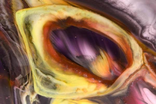 Eye Of The Dragon Art Print