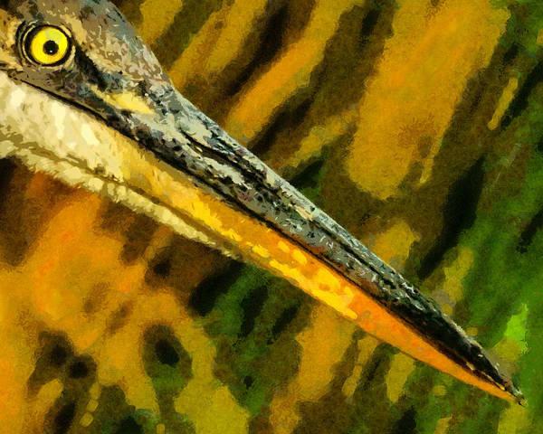 Colorado Wildlife Digital Art - Eye Of The Heron by Ernie Echols