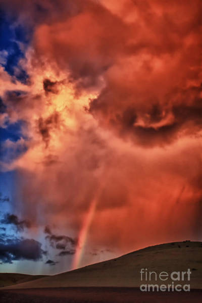 Photograph - Eye Of The Storm by Beth Sargent