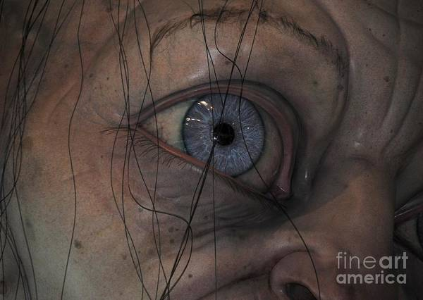 Photograph - Eye See You by Rachael Shaw