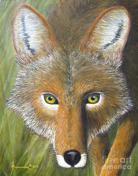 Wall Art - Painting - Eyes Of The Coyote by Jerome Stumphauzer