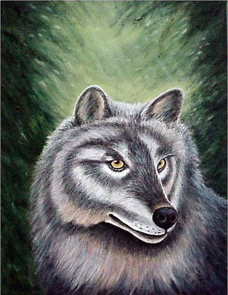 Painting - Eyes Of The Forest - Grey Wolf by Fran Brooks