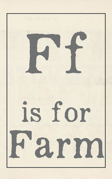Farmhouse Kitchen Painting - F Is For Farm by Katie Doucette