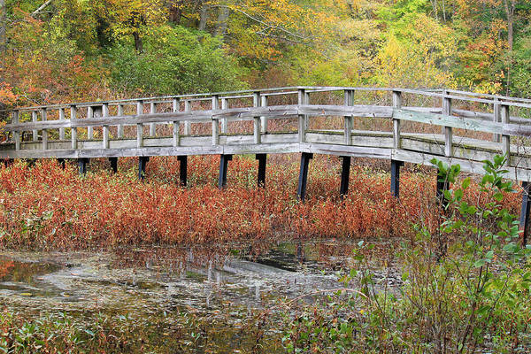 Photograph - Fable Bridge by Lily K