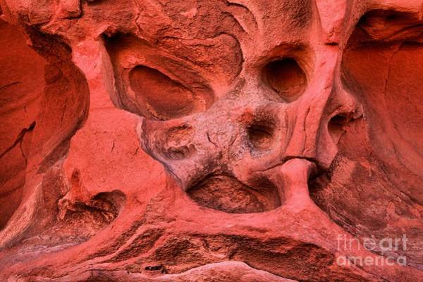 Photograph - Faces At The Valley Of Fire by Adam Jewell
