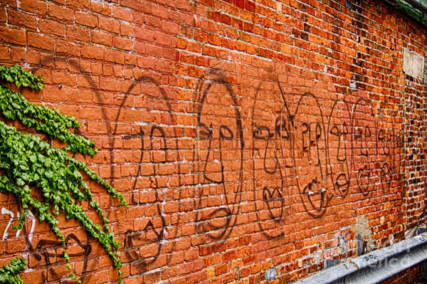 Photograph - Faces On The Bricks by Jim Lepard