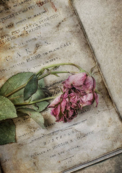 Photograph - Faded by Robin-Lee Vieira