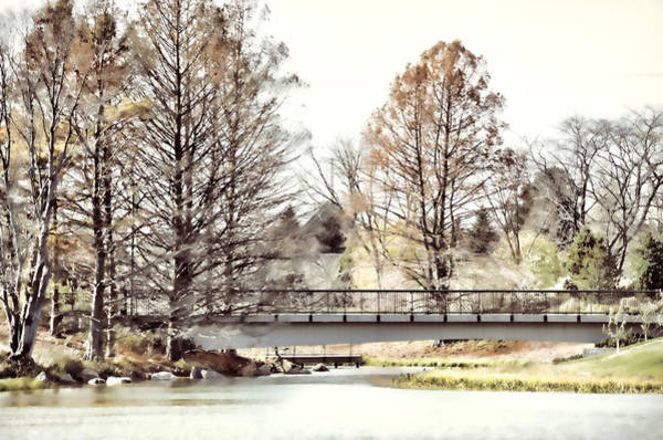 Chicago Botanic Garden Photograph - Fading Palette Of Fall by Julie Palencia