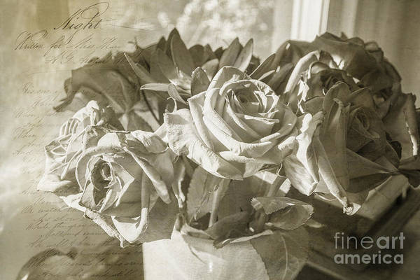 Photograph - Fading Roses by Terry Rowe