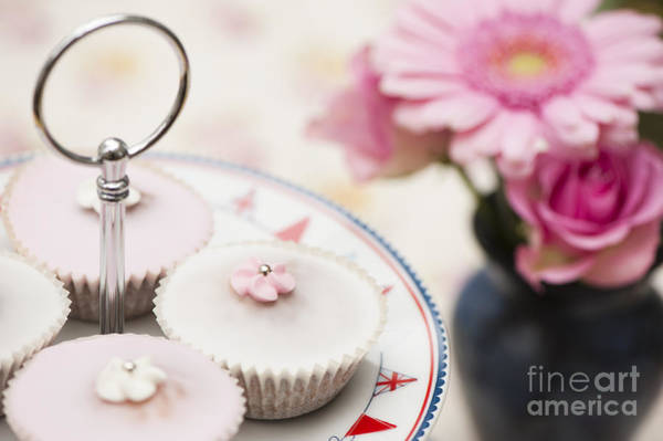 Posies Photograph - Fairy Cakes by Anne Gilbert