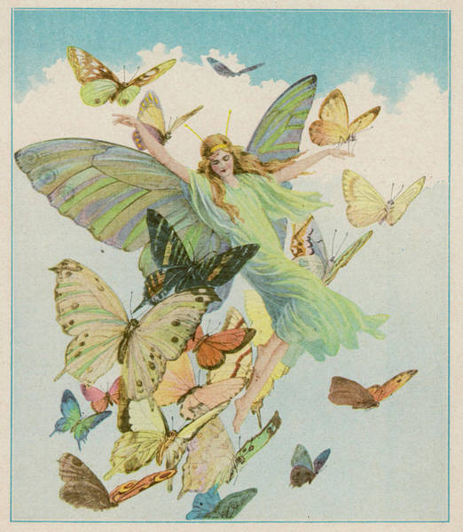 Folklore Drawing - Fairy Flying With Colourful Butterflies by Mary Evans Picture Library