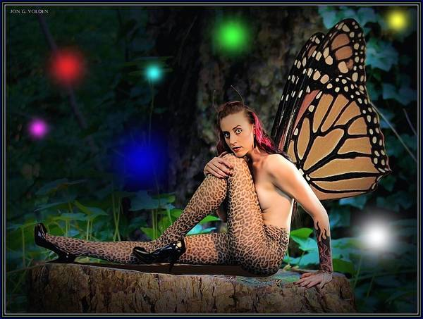 Photograph - Fairy Lights by Jon Volden