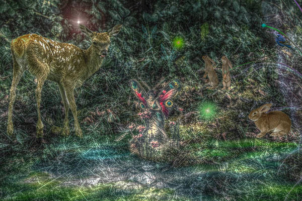 Celtics Mixed Media - Fairy Nights Forest Lights by Bill Oliver