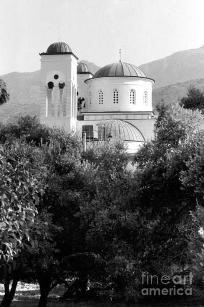 Photograph - Faith Among The Olive Trees by Paul Cowan
