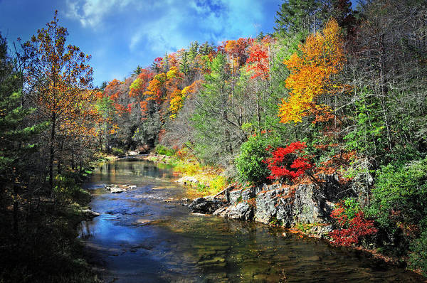 Linville Falls Wall Art - Photograph - Fall Along The Linville River by Lynn Bauer