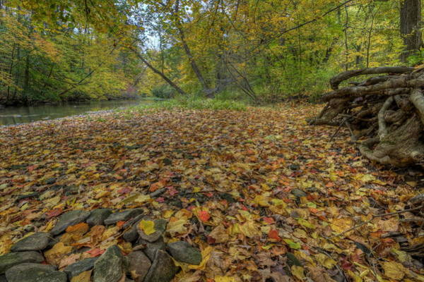 Photograph - Fall At Beaver Creek by David Dufresne