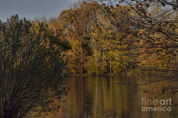 Brinton Photograph - Fall At Brinton Lake by Judy Wolinsky