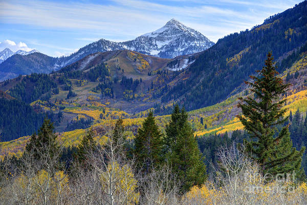 Fall At Cascade Peak And Sundance From Alpine Loop  Art Print